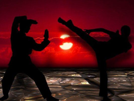 Martial Arts MMA
