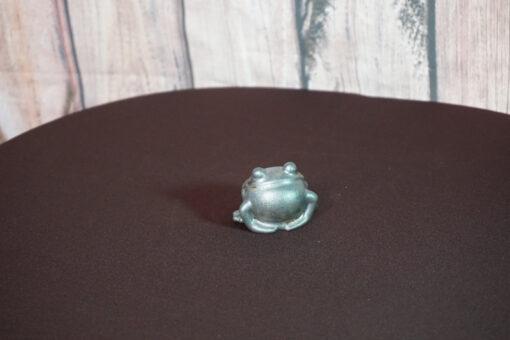 Frog Tea Pet